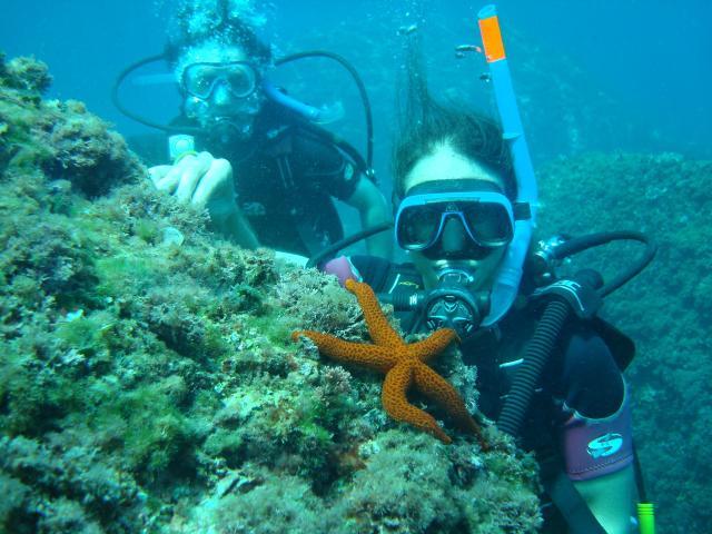 Calpe diving