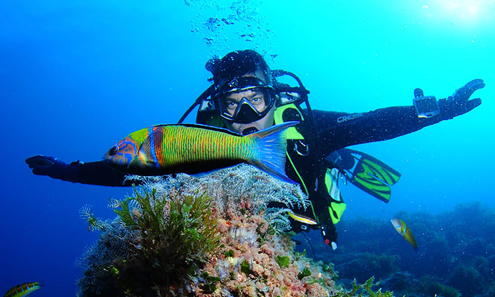 Scuba Diving In Spain Best Places To Dive Costa Blanca